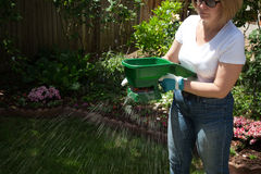 Fertilizing Lawn stock photography