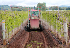 Fertilizing Raspberry Farm. A farmer uses specialized equipment to fertilize his raspberry field royalty free stock photo