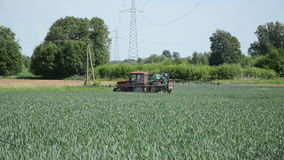 Fertilizing tractor. Makes a turn a cereal field and continue to spray the green corn stock footage