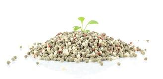 Fertilizzante chimico per la pianta su fondo bianco Fotografia Stock