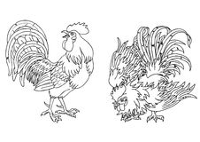 Fervent and fighting roosters contour Stock Photography