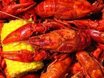 Fervura dos lagostins Imagens de Stock