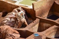 fes摩洛哥皮革厂 免版税库存照片