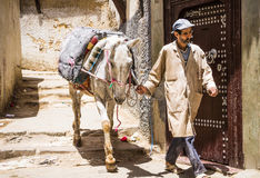 Fes, Marocco,man with horse in old Medina narrow street Stock Image