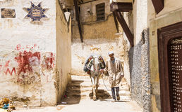 Fes, Marocco,man with horse in old Medina narrow street Stock Images