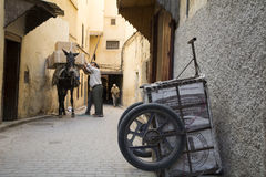 Fes medina, Marocko _ Royaltyfri Foto