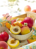 Fesh apricots and plums Stock Images