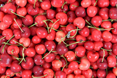 Fesh cherry. A group of fesh cherry for background uses stock images