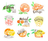Fesh Citrus Juice Promo Signs Colorful Set Stock Photos