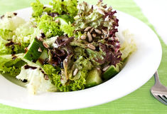Fesh green salad. With seeds and cucumbers stock image