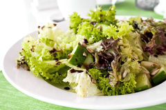 Fesh green salad with seeds. And cucumbers royalty free stock photography