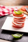 Fesh Italian Caprese. Salad with sliced mozzarella and herbs stock images