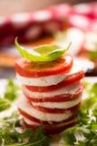 Fesh Italian Caprese. Salad with sliced mozzarella and herbs royalty free stock photography