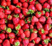 Fesh strawberry background Royalty Free Stock Photos