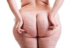Fesses de fille avec l'obésité Photo libre de droits