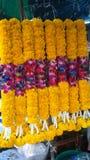 Festão do cravo-de-defunto para a doação Fotos de Stock Royalty Free