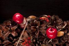 Festão do Natal Copie o espaço Fotos de Stock