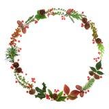 Festão natural da grinalda do inverno imagens de stock royalty free
