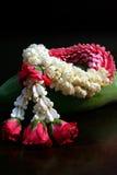 Festão tailandesa do jasmim Imagens de Stock Royalty Free
