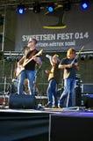 Fest 2014 de Sweetsen Images libres de droits
