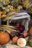 Festa Autumn Apples e zucche Immagini Stock Libere da Diritti