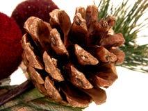 Festa: Cono del pino verniciato oro Fotografia Stock