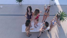 Festa costosa, gruppo di donna degli amici nel dancing del costume da bagno e bevanda dell'alcool della bevanda vicino alla pisci stock footage