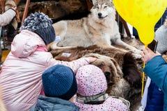 Festa de pastores e de fishermans da rena As crianças veem um lobo enchido e uma cabeça do urso na feira imagens de stock
