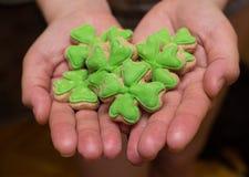 Festa del giorno del ` s di St Patrick dell'Irlandese - biscotti sotto forma di trifoglio verde sul primo piano delle mani come s fotografia stock libera da diritti