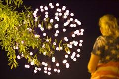 festa dell'indipendenza, fuochi d'artificio, il 4 luglio, U.S.A. fotografie stock libere da diritti