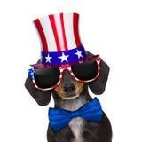 Festa dell'indipendenza quarta del cane di luglio Immagini Stock Libere da Diritti