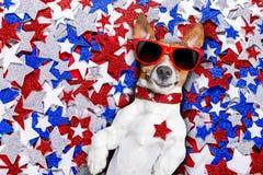 Festa dell'indipendenza quarta del cane di luglio Fotografia Stock