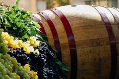 Festa dell`Uva, Impruneta. Tuscany Chianti wine festival, Italy. Wood barrell with bunches of wine grapes. Festa dell`Uva, Impruneta. Tuscany Chianti wine stock photos