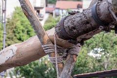 Festa della ` Ndenna, Rito Arboreo, Tradycyjny przebłagalny obrządek zdjęcie stock