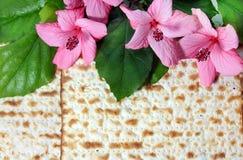Festa della primavera del pesach Fotografia Stock Libera da Diritti