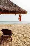 Festa di natale sulla spiaggia Fotografie Stock Libere da Diritti