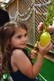 Festa ebrea di sukkot Immagine Stock Libera da Diritti