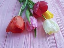 Festa fresca del mazzo dei tulipani su un marzo delicato del fondo di primavera di legno rosa romantico Fotografia Stock Libera da Diritti