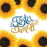 Festa junina sunflower background with lettering. Festa junina background with lettering and sunflowers frame. Popular Brazilian harvest festival. Vector Royalty Free Stock Images