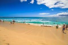 Feste della spiaggia di Waikiki Immagine Stock