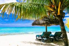 Feste di rilassamento romantiche in isola tropicale fotografie stock libere da diritti