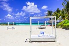 Feste di rilassamento tropicali nella bella isola delle Mauritius fotografia stock