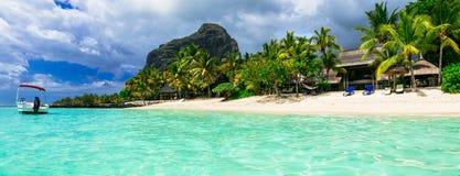 Feste tropicali di rilassamento - isola splendida delle Mauritius Le Morne fotografie stock