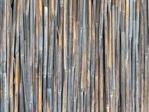 Feste Wand von Wetter getragenen trockenen Schilfen Lizenzfreie Stockfotos