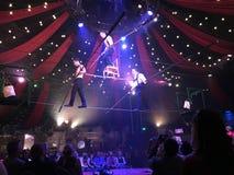 Festes Seilwanderer Wermutzeigung in Las Vegas Stockfotos
