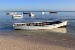 Festgemachte Boote, früher Morgen Stockbild
