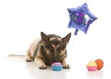 Festin d'anniversaire images stock
