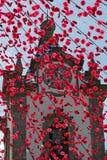 Festin religieux, Madère Image libre de droits