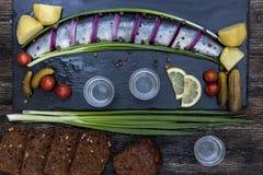 Festin russe avec des harengs, des oignons, des pommes de terre et la vodka Photo stock