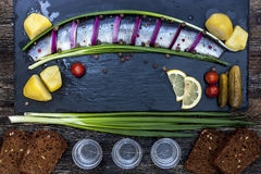 Festin russe avec des harengs, des oignons, des pommes de terre et la vodka Photo libre de droits